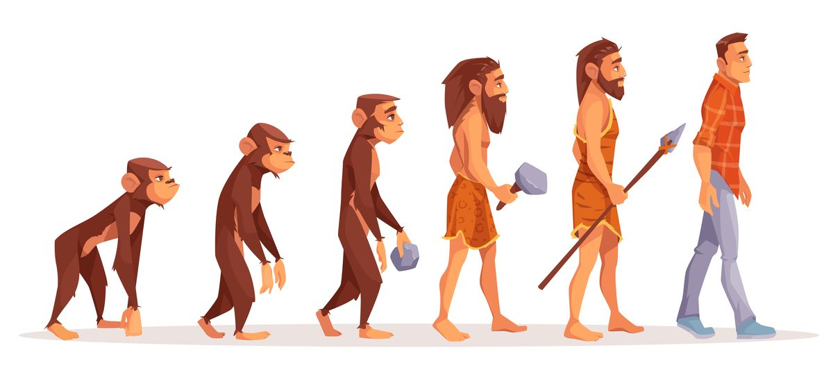 Human evolution stages cartoon vector concept